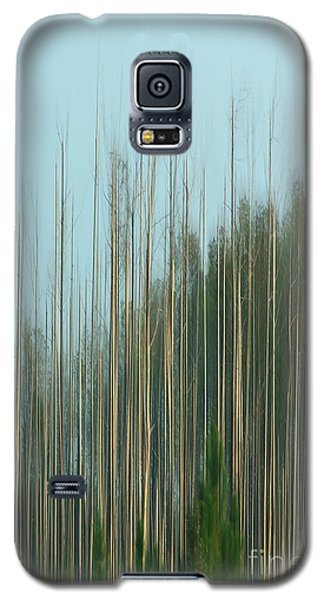 Dream Forest Galaxy S5 Case