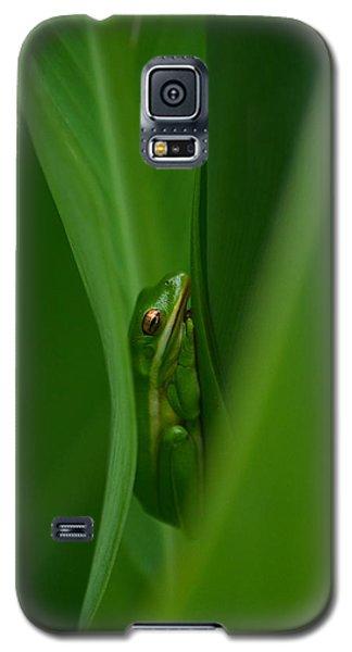 Dream Green  Galaxy S5 Case