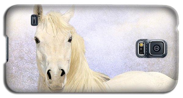 Dream Horse Galaxy S5 Case by Karen Slagle