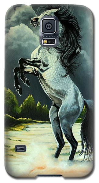 Dream Horse Series 262 - The Lost Stallion Revealed Galaxy S5 Case by Cheryl Poland