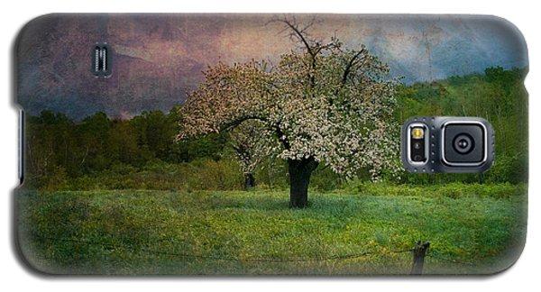 Dream Of Spring Galaxy S5 Case