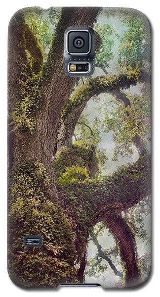 Dreamer's Oak Galaxy S5 Case