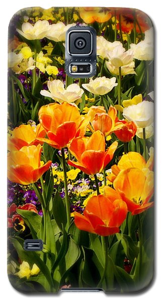 Dreaming In Color Galaxy S5 Case