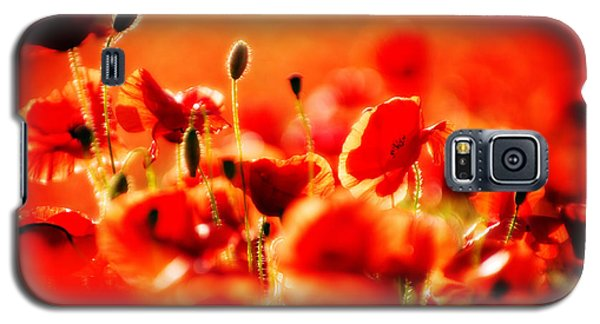 Dreaming Of Poppies Galaxy S5 Case by Meirion Matthias