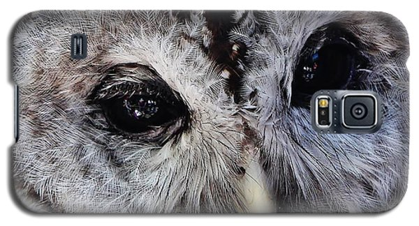 Dreaming Owl Galaxy S5 Case