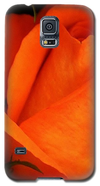 Galaxy S5 Case featuring the photograph Dreams Of Orange by Bruce Bley