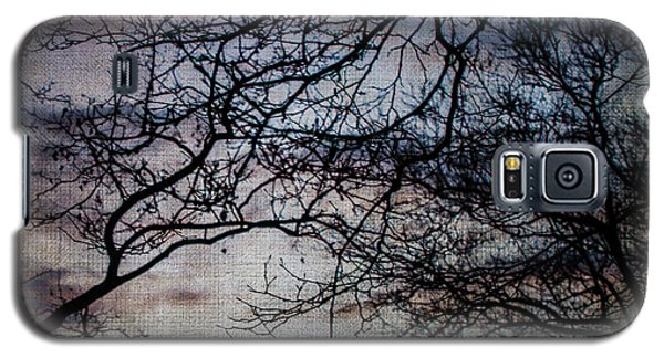 Dreamy 2 Galaxy S5 Case by Judy Wolinsky