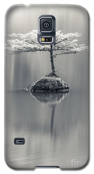 Dreamy Galaxy S5 Case