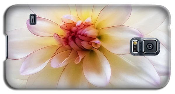 Dreamy Dahlia Galaxy S5 Case