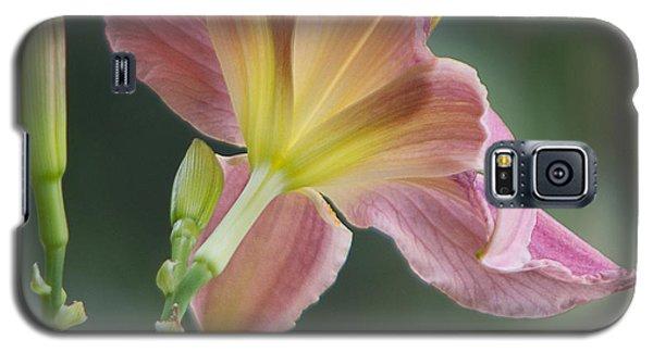 Dreamy Daylily Galaxy S5 Case by Patti Deters