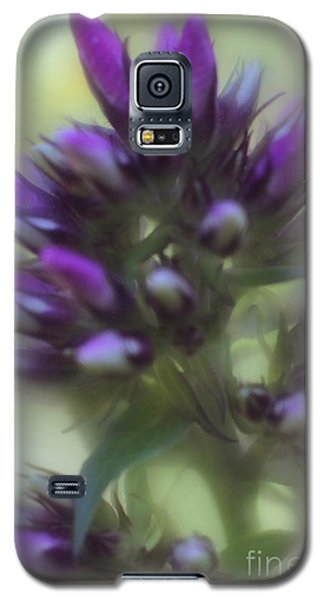 Galaxy S5 Case featuring the photograph Dreamy Lavendar Buds by Mary Lou Chmura