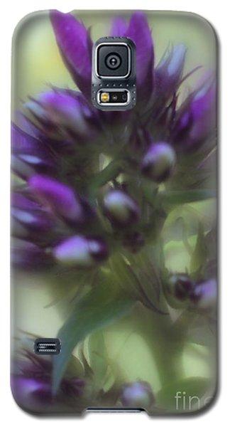 Dreamy Lavendar Buds Galaxy S5 Case by Mary Lou Chmura