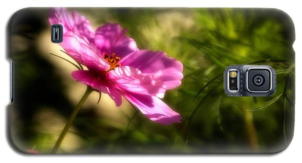 Galaxy S5 Case featuring the photograph Dreamy Pink Comos by Marjorie Imbeau