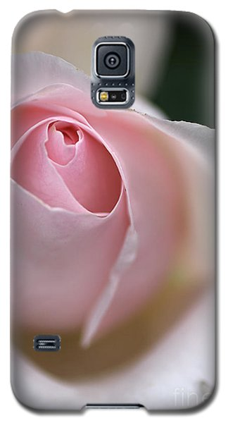 Galaxy S5 Case featuring the photograph Dreamy Rose by Joy Watson