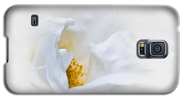 Dreamy White Rose Galaxy S5 Case by Jane McIlroy