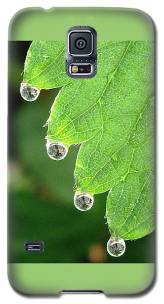 Drenched Galaxy S5 Case