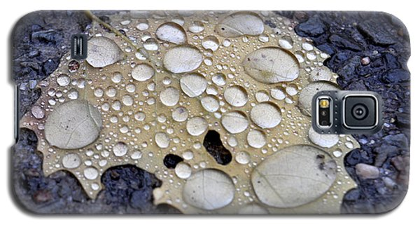 Drenched Leaf Galaxy S5 Case