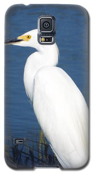 Dress Whites Galaxy S5 Case