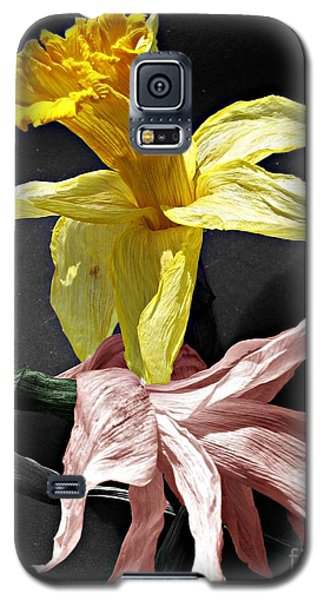 Galaxy S5 Case featuring the photograph Dried Daffodils by Nina Silver