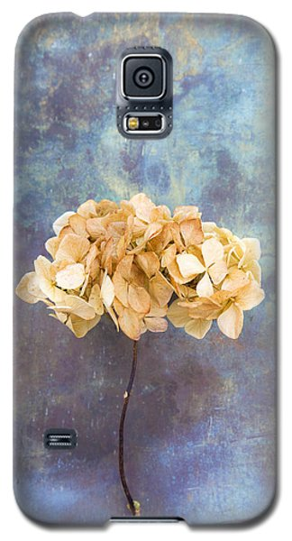 Dried Hydrangea Galaxy S5 Case