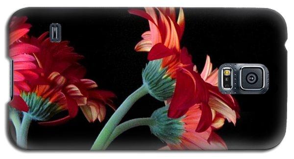 Galaxy S5 Case featuring the photograph Drift Apart by Brenda Pressnall