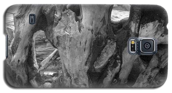 Drift Wood Cove Galaxy S5 Case