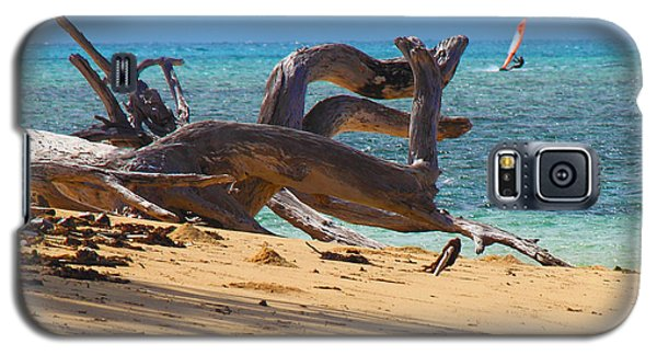 Drift Wood Galaxy S5 Case