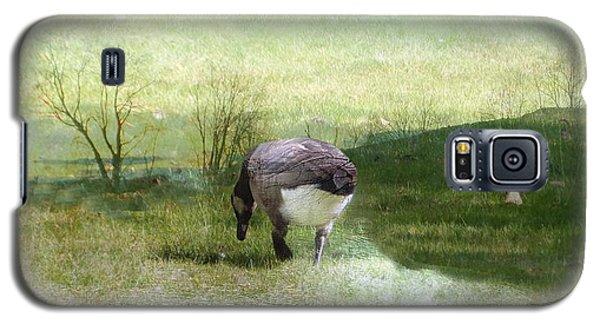 Drifter Galaxy S5 Case by Mike Breau