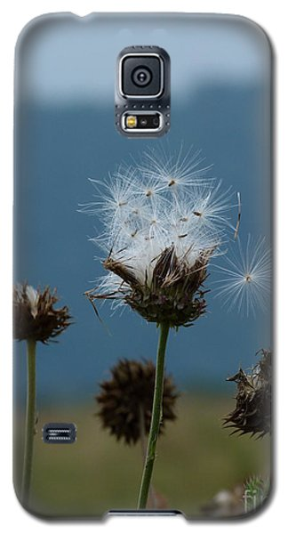 Galaxy S5 Case featuring the photograph Drifting Off by Jane Ford