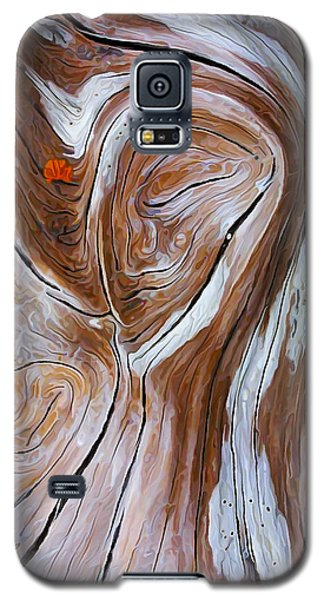 Galaxy S5 Case featuring the photograph Driftwood 6 by ABeautifulSky Photography