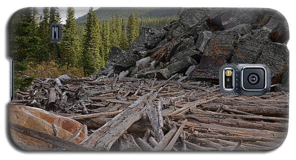 Driftwood And Rock Galaxy S5 Case by Cheryl Miller