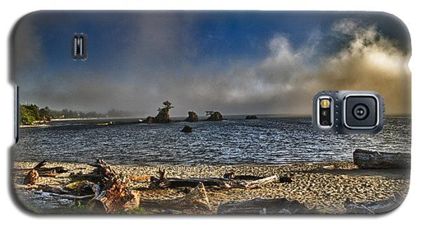 Driftwood Beach Galaxy S5 Case