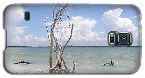 Galaxy S5 Case featuring the photograph Driftwood by Carol  Bradley