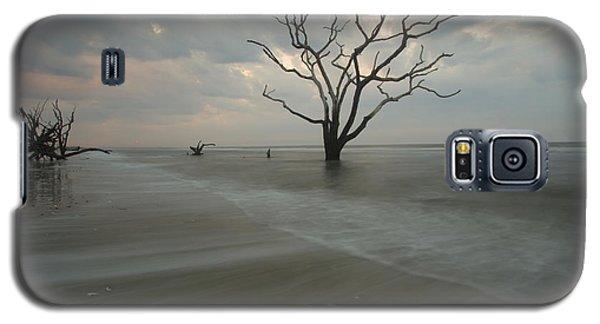 Driftwood Dawn Galaxy S5 Case