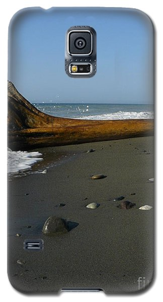 Driftwood Galaxy S5 Case by Jane Ford