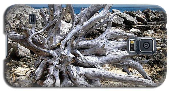 Galaxy S5 Case featuring the photograph Driftwood by Judy Palkimas