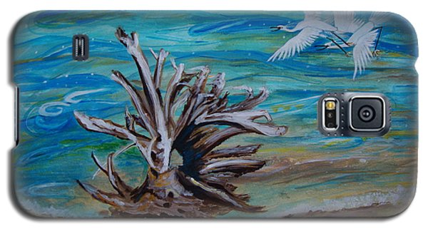 Driftwood On Lake Huron Galaxy S5 Case