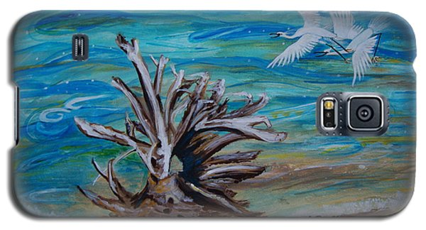 Driftwood On Lake Huron Galaxy S5 Case by Veronica Rickard