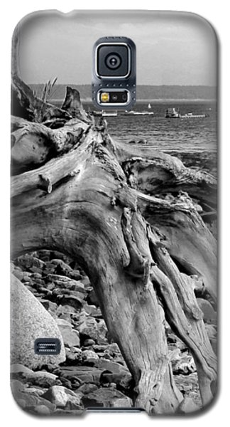 Driftwood On Rocky Beach Galaxy S5 Case