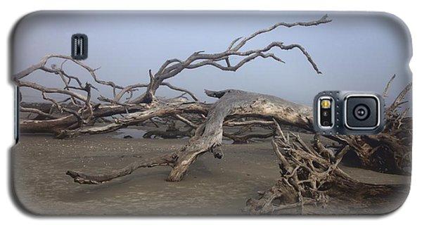 Driftwood Trees On Jekyll Island Galaxy S5 Case