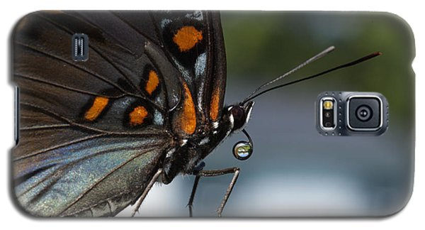 Galaxy S5 Case featuring the photograph Drinking Dew Drops 1 by David Lester