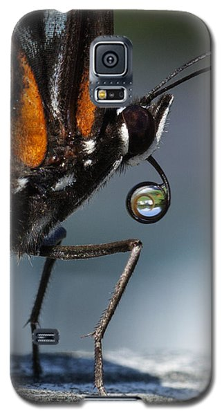 Galaxy S5 Case featuring the photograph Drinking Dew Drops 6 by David Lester