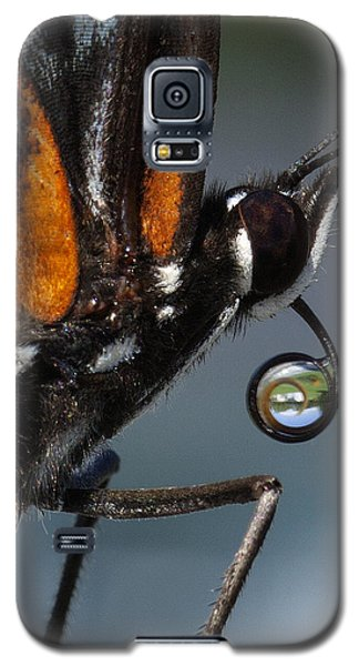 Galaxy S5 Case featuring the photograph Drinking Dew Drops 7 by David Lester