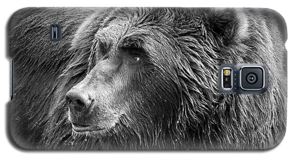 Drinking Grizzly Bear Black And White Galaxy S5 Case