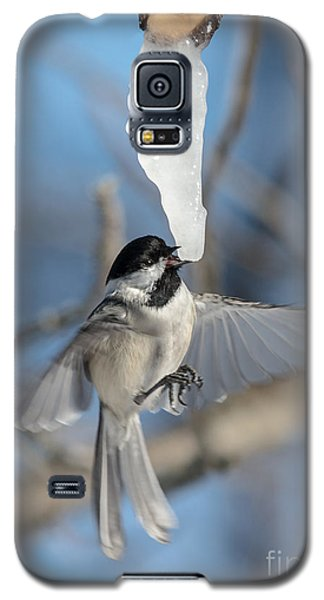 Drinking In Flight Galaxy S5 Case