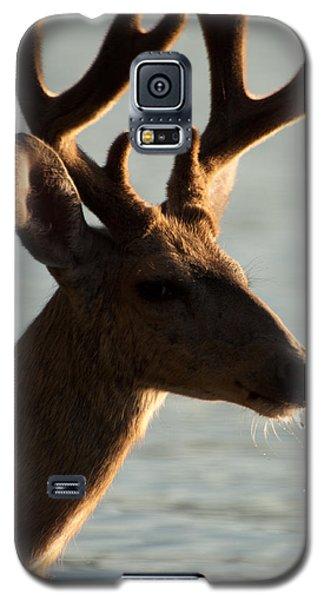 Drooler Galaxy S5 Case