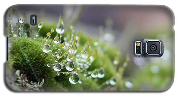 Droplets Galaxy S5 Case by Cathie Douglas