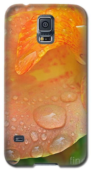 Droplets On A Canna IIi Galaxy S5 Case