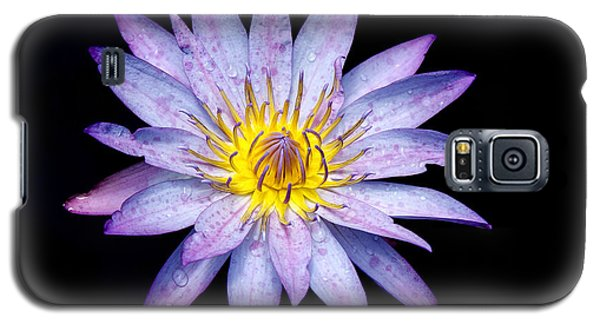 Droplets On A Water Lily. Galaxy S5 Case