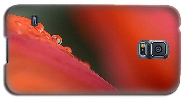 Droplets On Petals - 5796 Galaxy S5 Case
